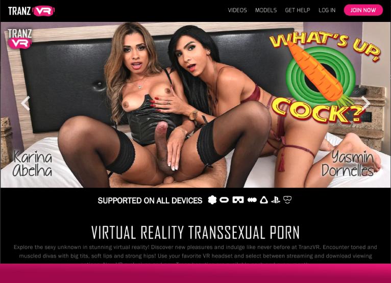 Tranz VR – Trans Virtual Reality Porn